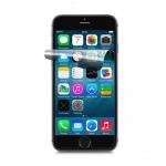 Пленка защитная на экран для iPhone SE Глянцевая